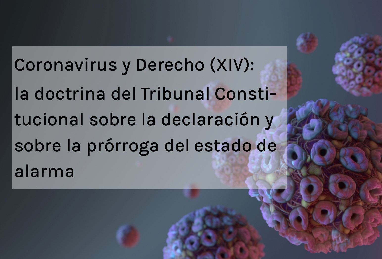 Coronavirus y Derecho XIV